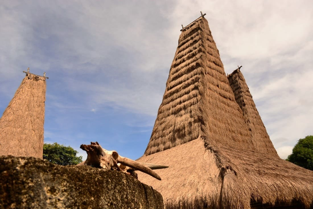 The Pasola of Sumba island - where the blood fertilize the ancestor's land 12