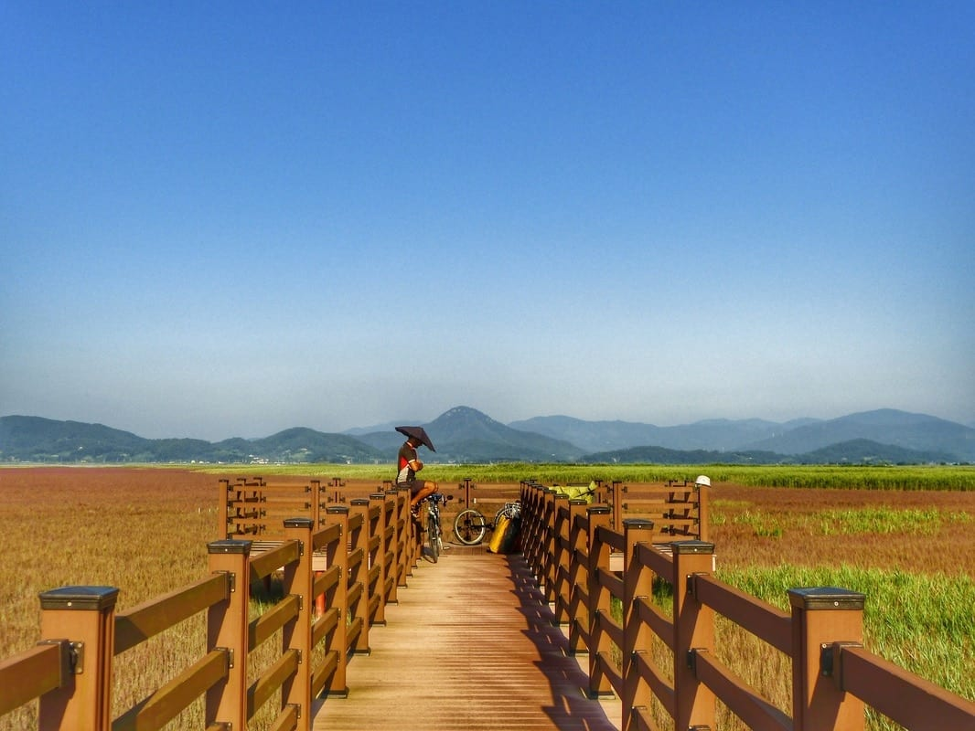 Backpacking Korea on a budget (less than 10$ per day): a guide for adventurous travelers 14