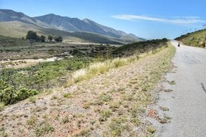 Prince Alfred Pass & R62: a Garden Route Itinerary from Knysna to Port Elizabeth 12