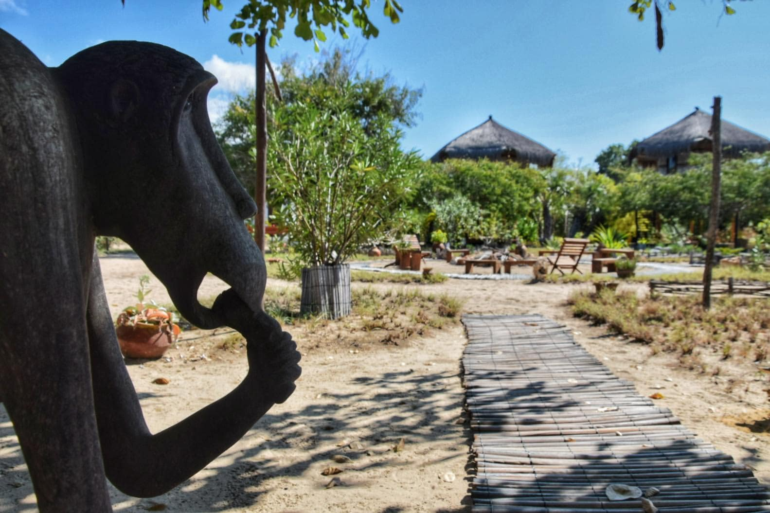 Marimba Secret Gardens, the best lodge in Vilanculos 9