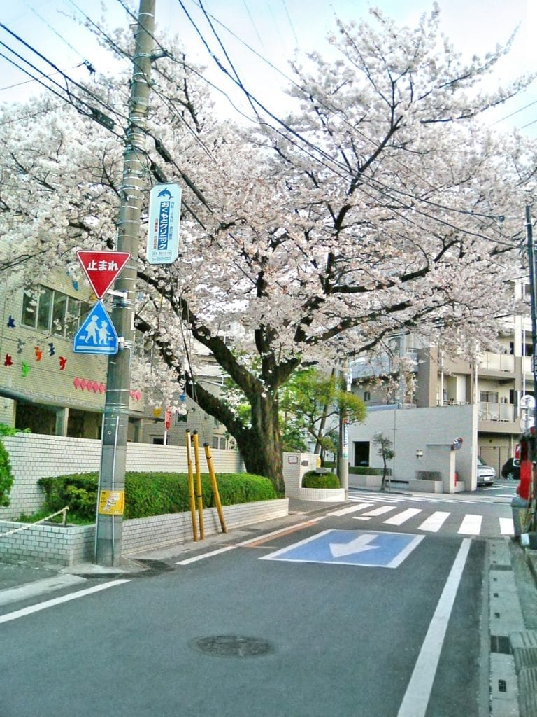 side trips from tokyo