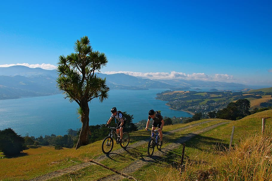7 Popular Cycling Destinations in New Zealand 9