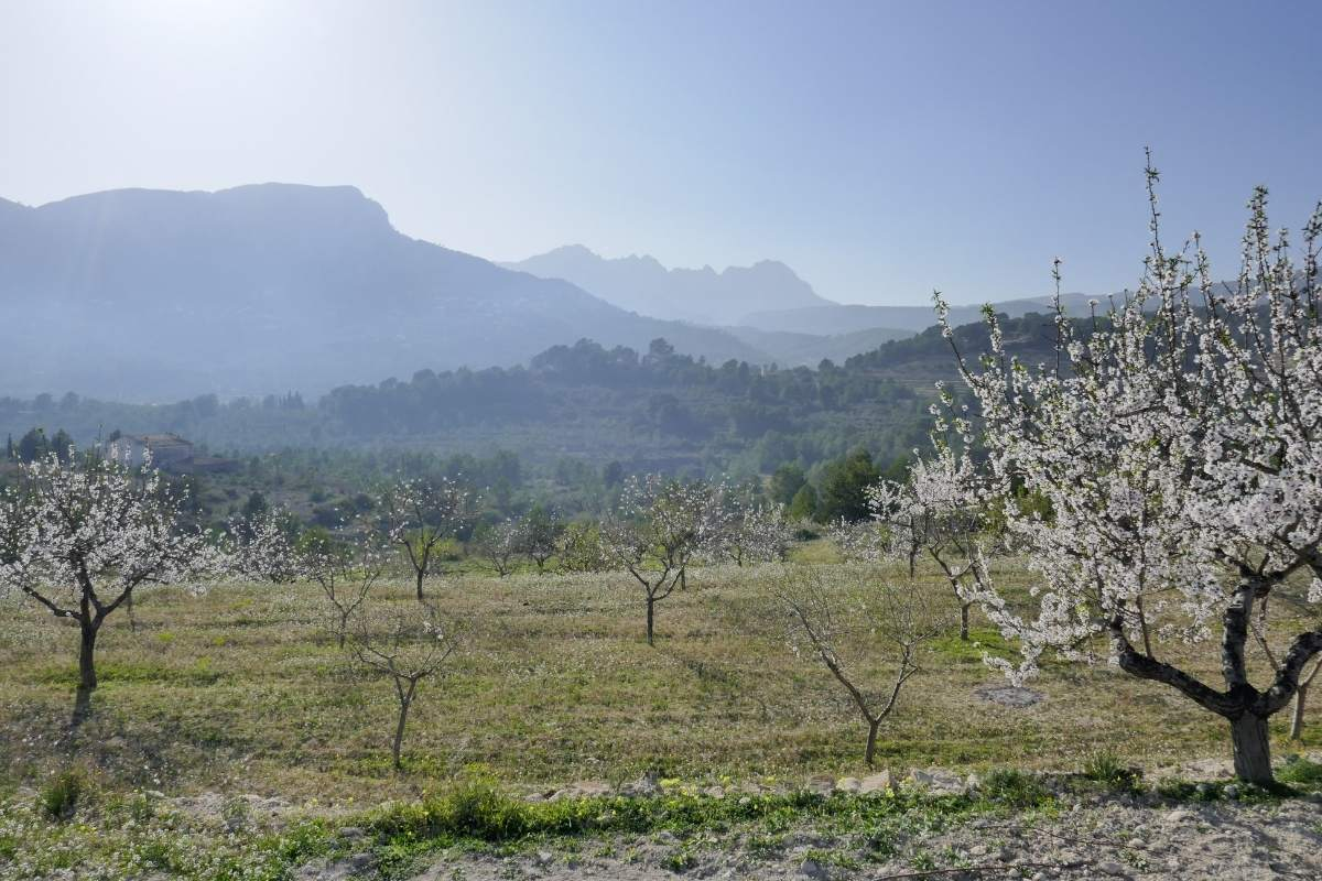 Cycling Andalucia and the Spanish Southern Coast 43